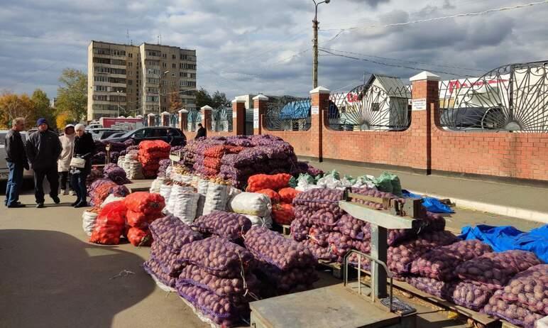 В Челябинске торговцы будут наказаны за продажу овощей на парковке у рынка «Северо-западное подво