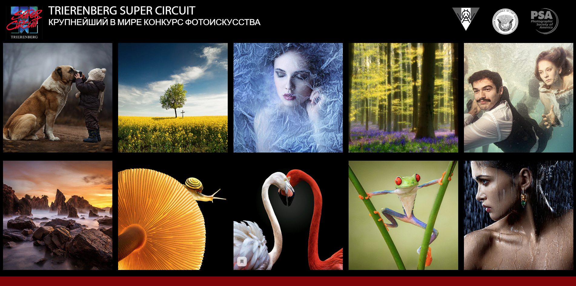 На конкурсе XXVIII Trierenberg Super Circuit коллекция работ южноуральских фотографов, состоящая