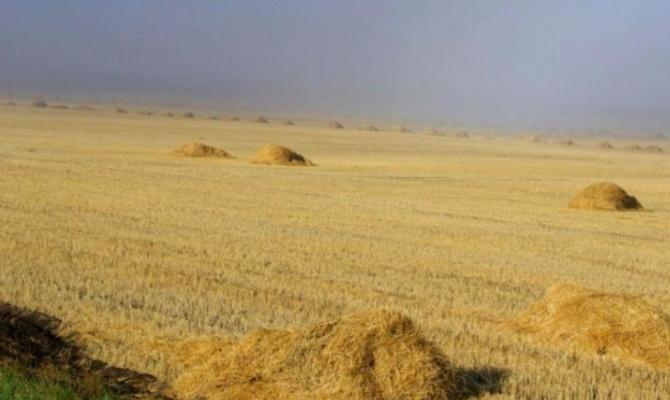 Аграрии Южного Урала обмолотили 41% уборочной площади и собрали первый миллион тонн зерна. Средня