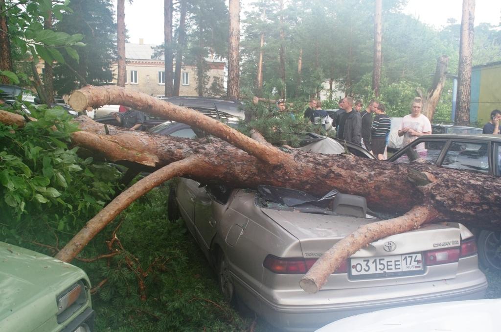 Напомним, 14 июня в результате разбушевавшейся стихии на берегу Ильменского озера,