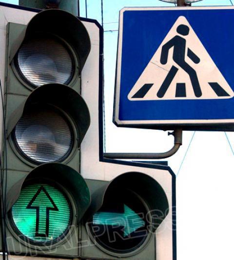 Почти сто светофоров на перекрестках города оборудуют табло обратного отсчета, кот