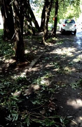 Разбушевавшаяся стихия принесла немало неприятностей жителям Коркино (Челябинская область) сегодн