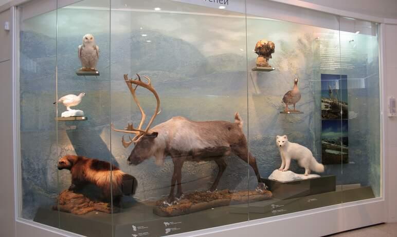 Государственный исторический музей Южного Урала включился в работу над программой непрерывного эк