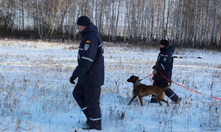 В Катав-Ивановске (Челябинская область) спасатели вторые сутки ищут мужчину, который ушел на деля