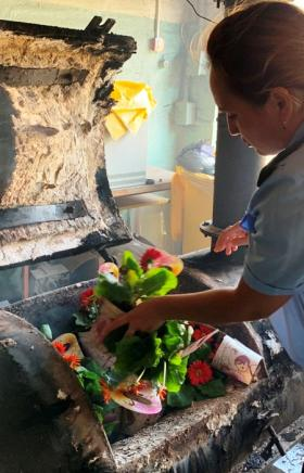 В Челябинске в огне сгорели сто горшечных гербер, в которых поселился опасный карантинный вредите