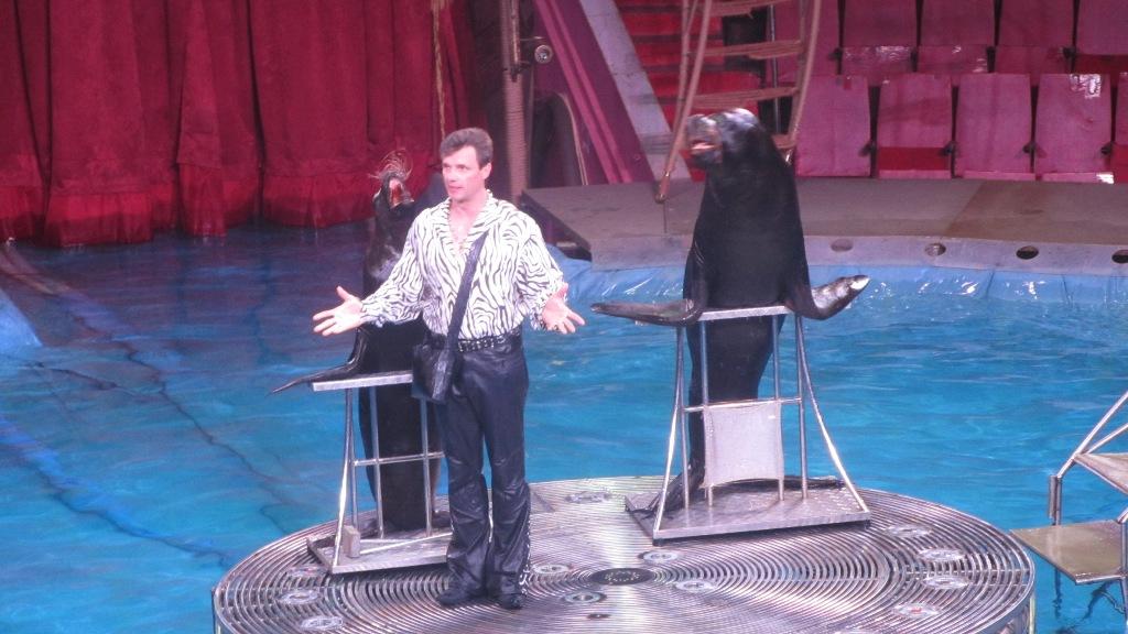Накануне премьеры в Челябинском цирке нового московского аттракциона на воде «Шевченко-Шоу» его о