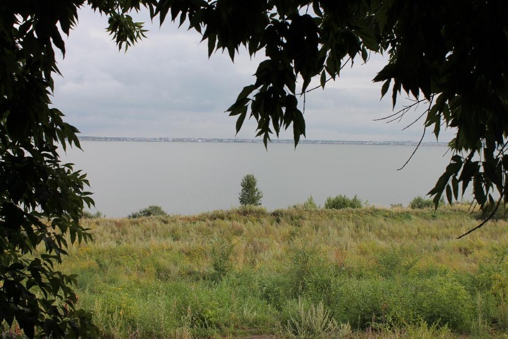 По словам руководителя челябинской группы общественного мониторинга ОНФ по проблемам экологии и з