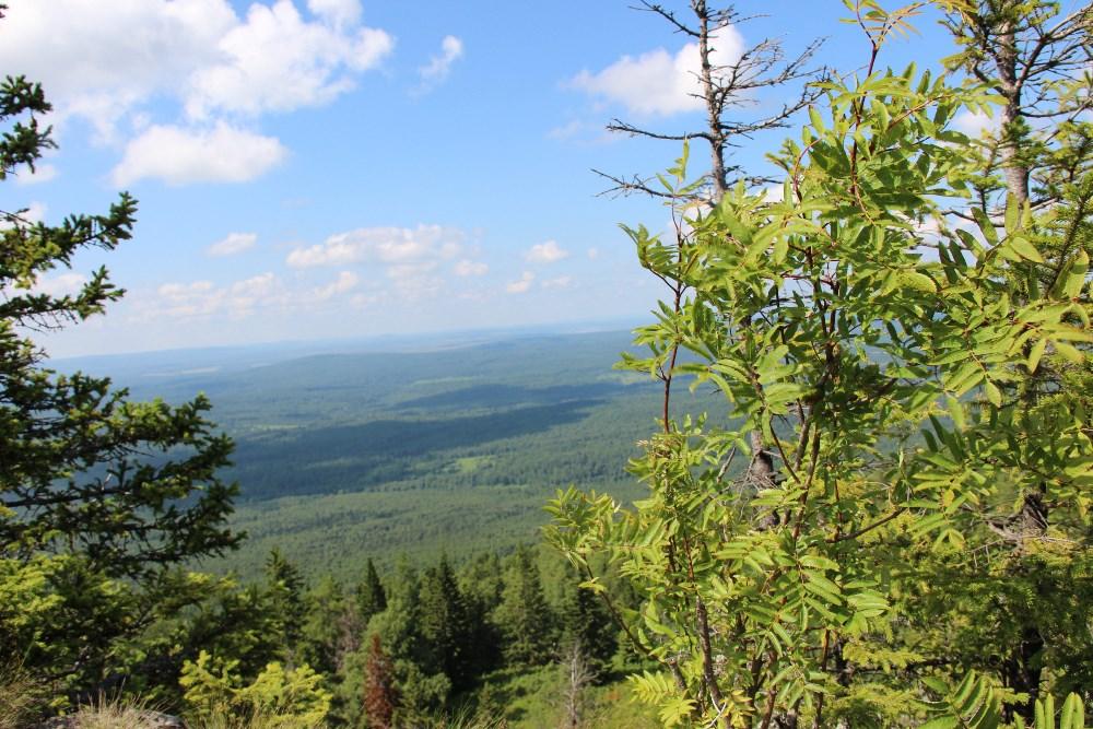 В Челябинской области появится первый биосферный резерват под названием «Горный Урал», который ст