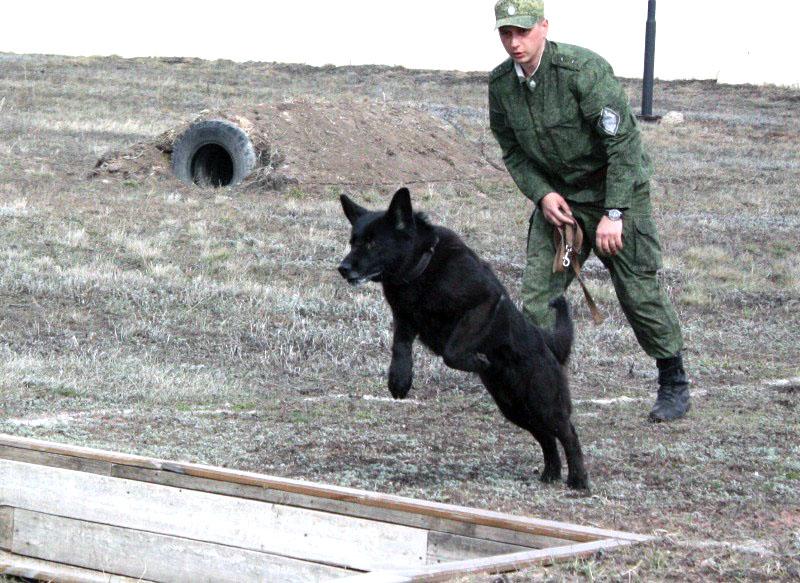 В пограничном управлении ФСБ России по Челябинской области состоялись ежегодные соревнования по с