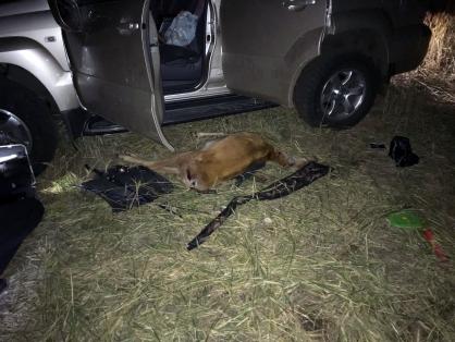 Правоохранительиз Челябинской области погиб в ДТП после совместной с товарищем браконьерской выл
