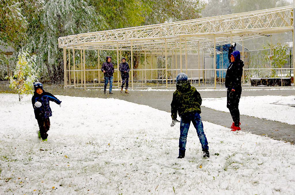 По данным Челябинского гидрометцентра, в выходные в большинстве районов прошли осадки в виде дожд