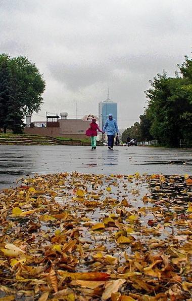 Штормовое предупреждение объявлено в Челябинской области на среду, 21 августа, в связи с ухудшени