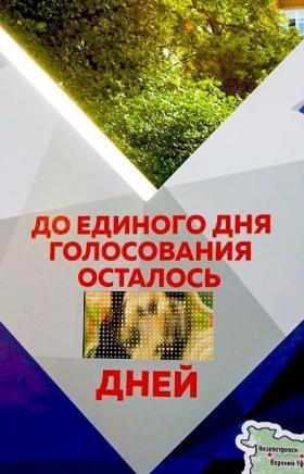 «Ростелеком» организует онлайн-видеонаблюдение на выборах губернатора Челябинской области. Камеры