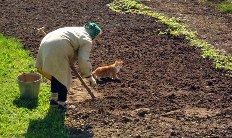 Число безработных жителей Челябинска за прошедшую неделю уменьшилось на 719 человек.  С