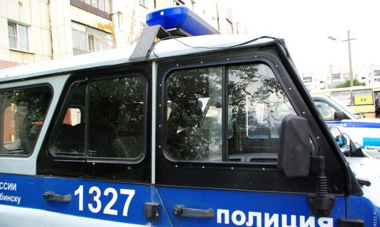 В Верхнем Уфалее (Челябинская область) полиция возбудила административное дело по факту нанесения