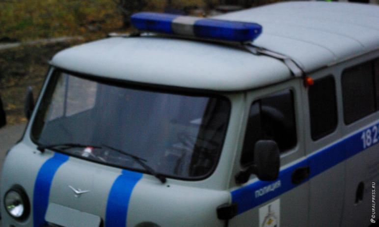 Жителя Бакала (Челябинская область) будут судить за причиненные увечья собаке. Находясь в состоян