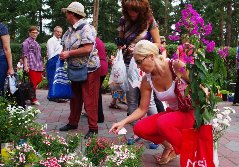 Челябинск превратится в город цветов в дни саммитов ШОС и БРИКС, которые пройдут в 2020 году. «Пр