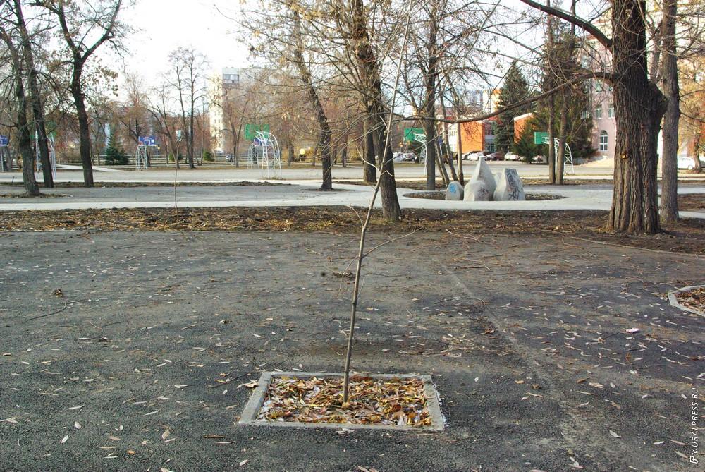 Сегодня, 19 ноября, после аппаратного совещания в администрации Челябинска глава Центрального рай