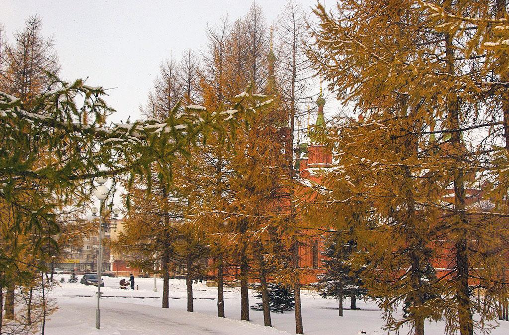 Как сообщили агентству «Урал-пресс-информ» в челябинском Гидрометцентре, утром в Челябинске – плю