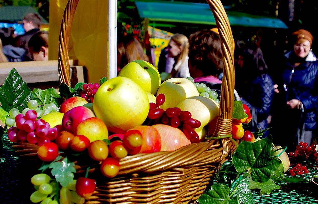 Садоводы-любители, товарищества, фирмы представили на осеннем празднике плоды своего труда.
