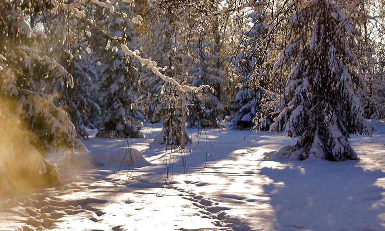 В понедельник, 15 марта, в Челябинской области ожидается морозная погода ночью, резкое потепление