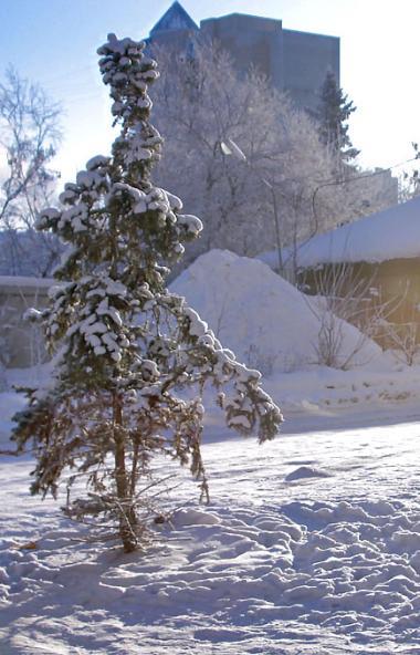 В предстоящие выходные, 16 и 17 ноября, в Челябинской области ожидается переменная облачность, пр