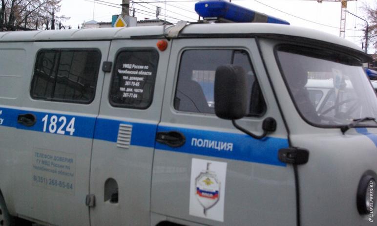 Полиция Челябинска продолжает поиски вандалов, которые разрушили новогодние арт-объекты в ледовом