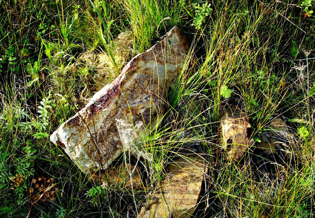 Три новых месторождения общераспространенных полезных ископаемых открыто на в Челябинской области