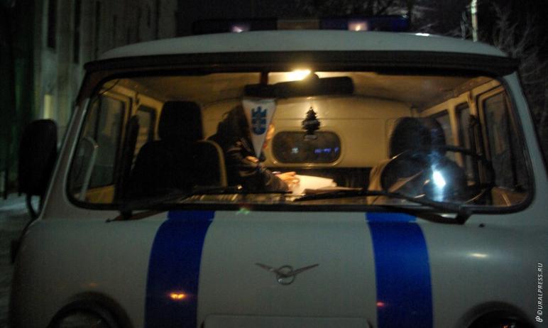 Полицейский Челябинска применил табельное оружие, чтобы остановить двух пьяных мужчин, которые из