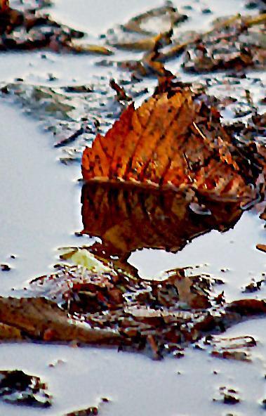 В предстоящие выходные, 28 и 29 сентября, в Челябинской области ожидается облачная погода с прояс
