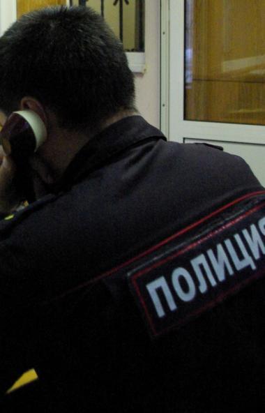В дежурную часть полиции Верхнего Уфалея (Челябинская область) поступило два сообщения из детских