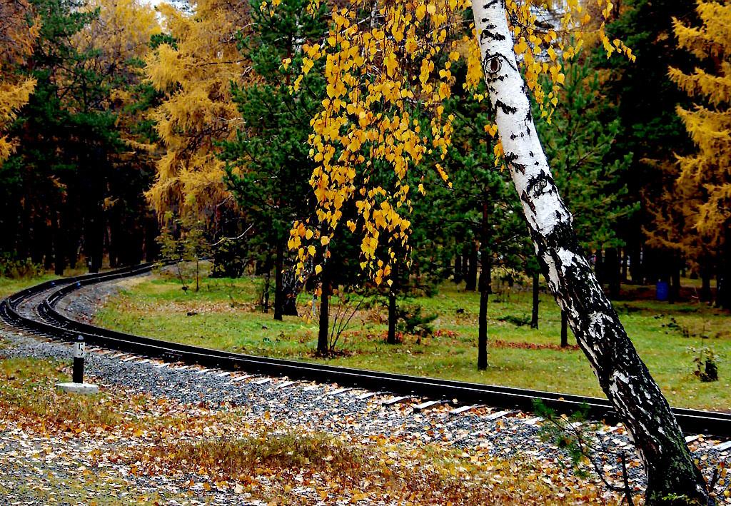 Октябрь в Челябинской области обещает быть пасмурным, холодным, в конце месяца возможно установле