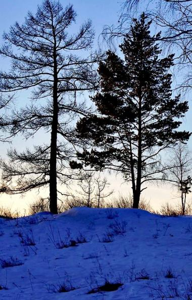 Во вторник, 4 февраля, в Челябинской области ожидается облачна погода, без осадков.  Как