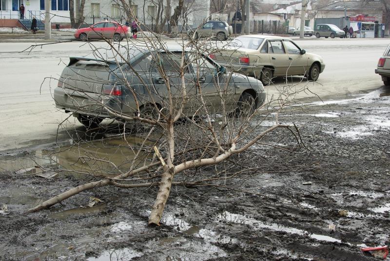 В 2017 год, объявленный Годом экологии, общественность Челябинска вошла агрессивно: практически в