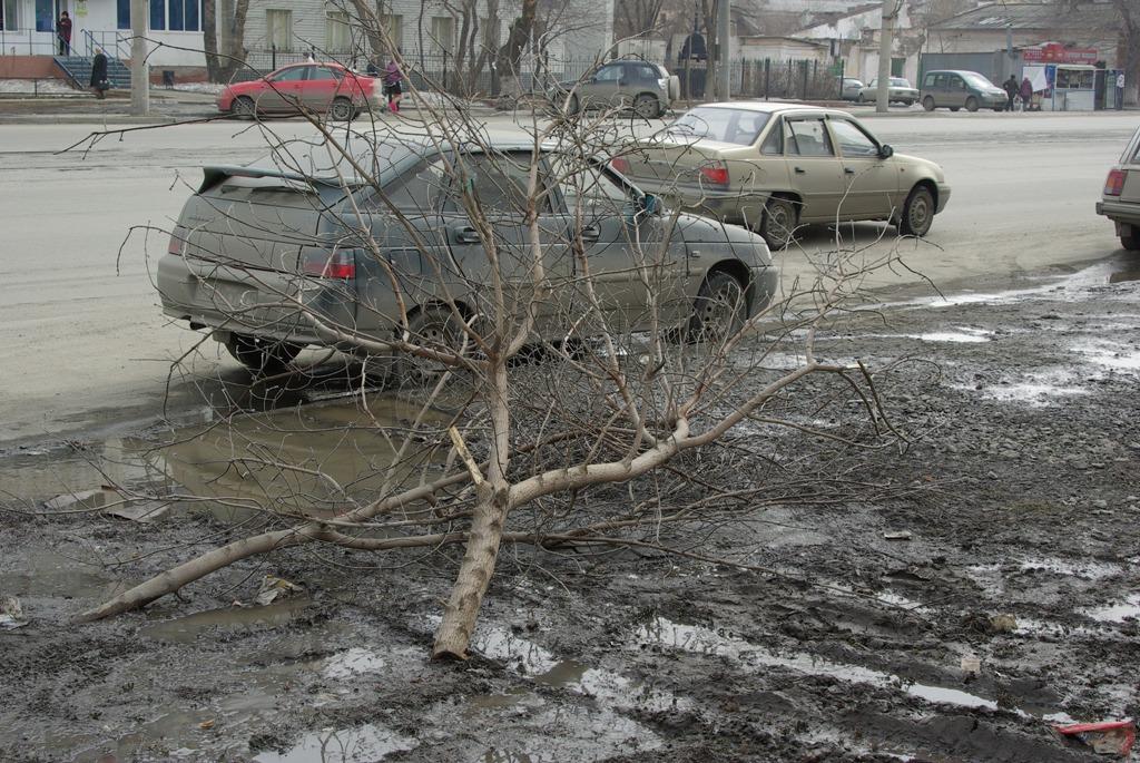 Министерство экологии Челябинской области потребовало у властей Миасса, Златоуста и Магнитогорска