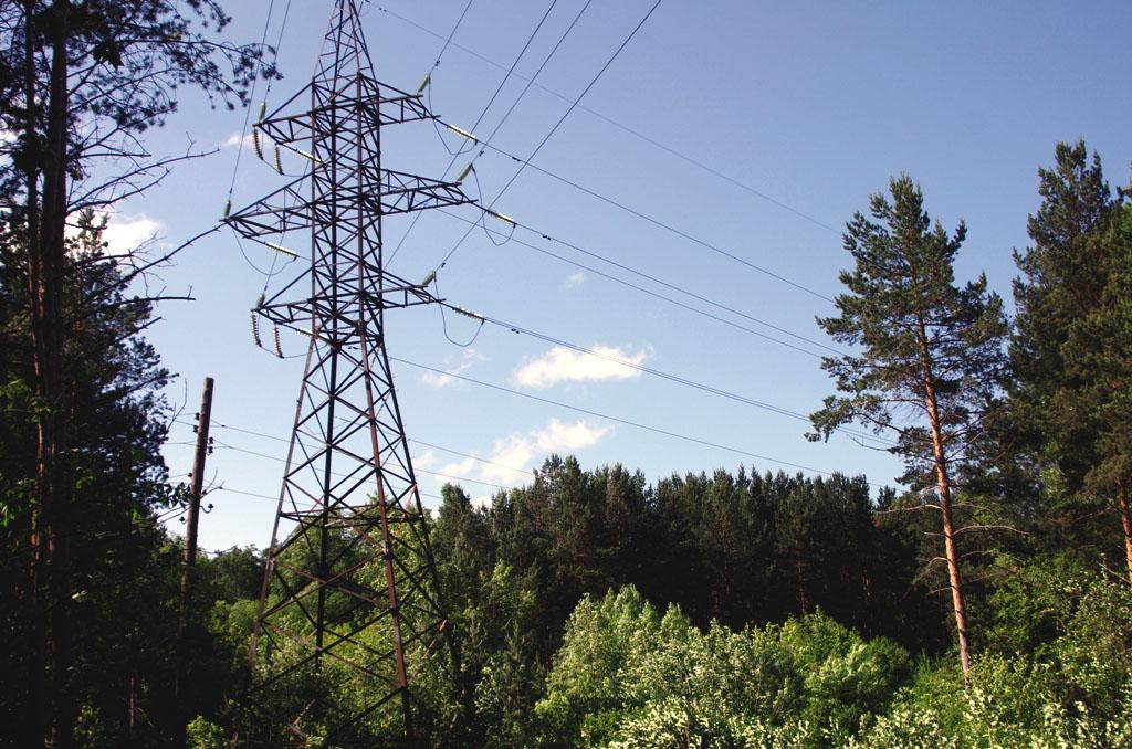 Производственная площадка свинокомплекса «Михири №1» в Челябинской области присоединена к электри