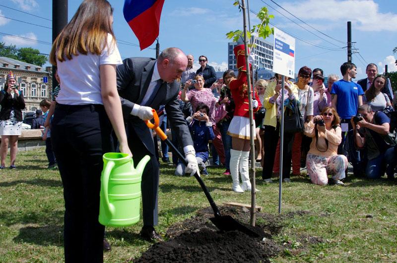 В Челябинске больше не будут высаживать молодые саженцы. С этого года для озеленения мегаполиса б