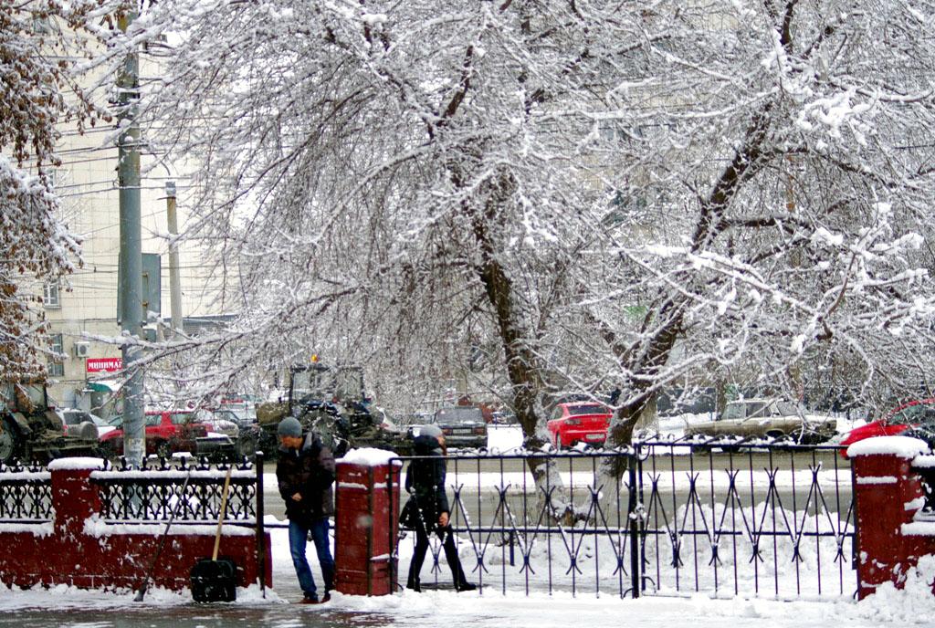 В среду, 7 ноября, в Челябинской области ожидается облачная погода, пройдет мокрый снег с дождем.