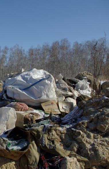 Жители поселка Старокамышинск (Челябинская область), направят все собранные подписи жителей, выст
