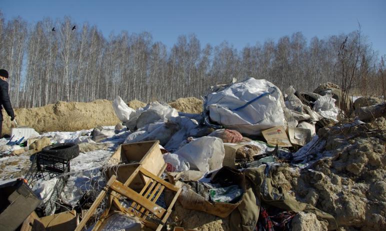 Ответственный за вывоз твердых коммунальных отходов в Горном кластере Челябинской области региона