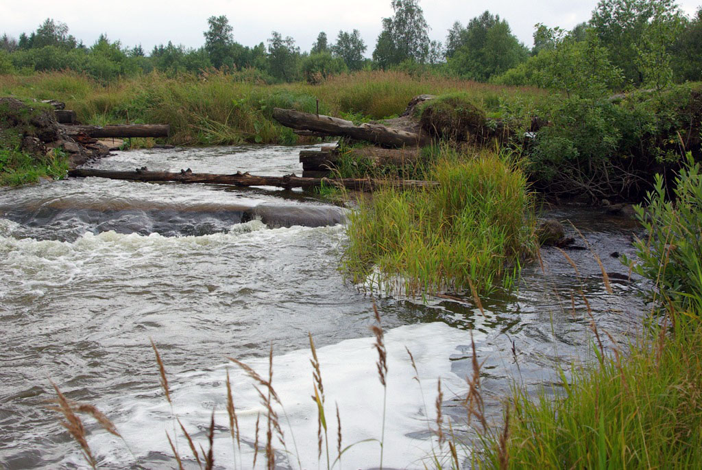 Водоканал Верхнего Уфалея (Челябинская области) загрязнял речку сточными водами. Коммунальное пре