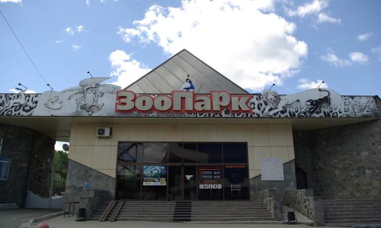 Челябинский зоопарк сегодня, 26-го сентября, опубликовал хорошую новость: еще один заболевший кос