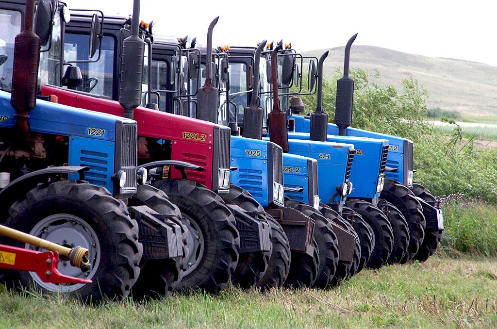 Сельскохозяйственные предприятия Челябинской области задолжали бюджету региона 130 миллионов рубл