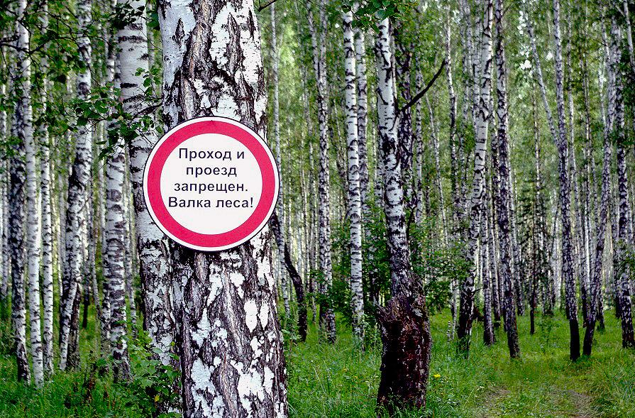 Первого августа текущего года Челябинский областной суд отклонил исковые требования челябинцев Вл