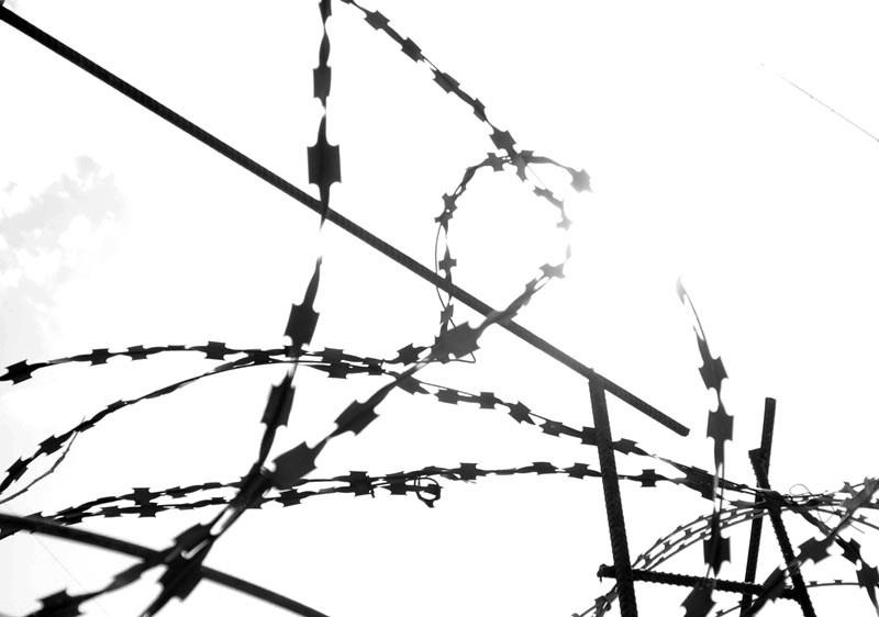 «Елене Каллы и Анатолию Павлову инкриминируют пять преступлений по части 4 статьи