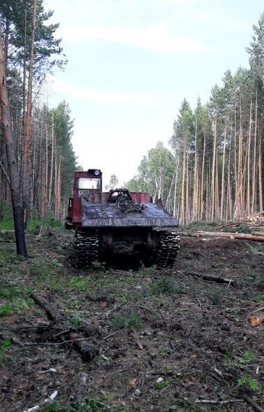 Глава Челябинской области Алексей Текслер высказал свое мнение по поводу строительства Томинского