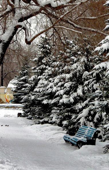 В пятницу, 27 декабря, в Челябинской области ожидается переменная облачность, местами пройдет неб