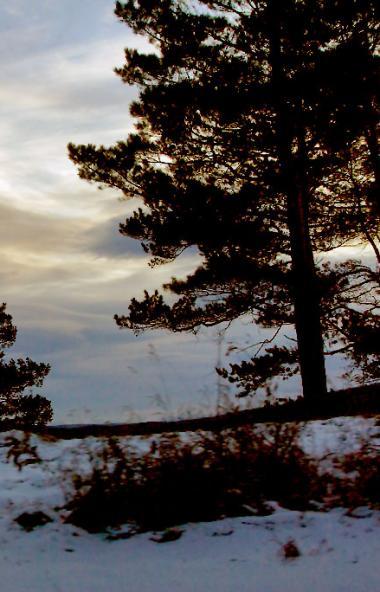 В среду, 20 ноября, в Челябинской области ожидается переменная облачность, преимущественно без ос