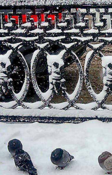 В среду, 18 декабря, в Челябинской области ожидается облачная погода с прояснениями, пройдет снег