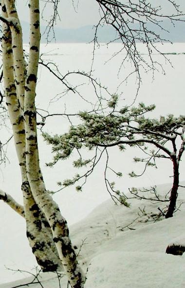 В предстоящие выходные, 30 ноября и 1 декабря, в Челябинской области ожидается переменная облачно